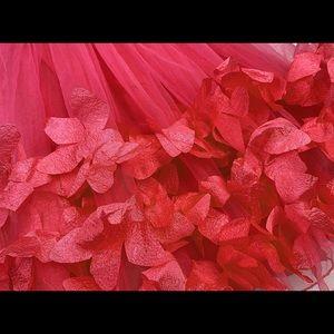 Dresses - Unicorn Flower Petal Tutu Princess Dress - Red